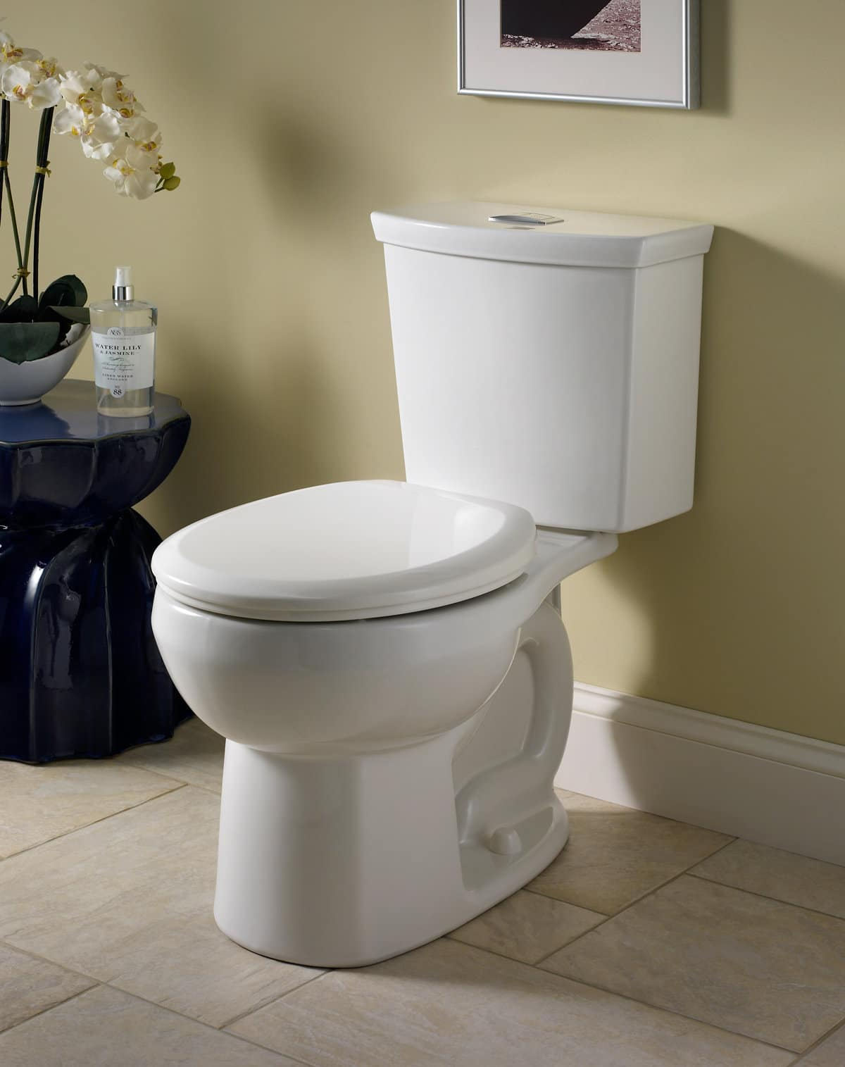 American Standard H2Option Siphonic Toilet Review - Shop Toilet