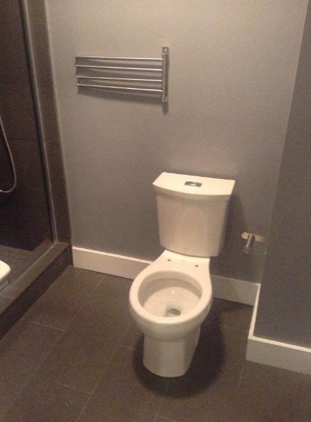 Best American Standard H2Option Toilet