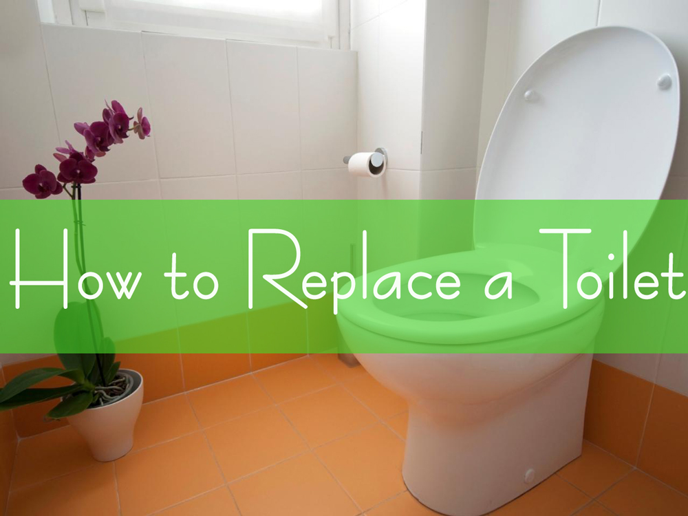 How To Replace A Toilet In 16 Easy Steps Shop Toilet