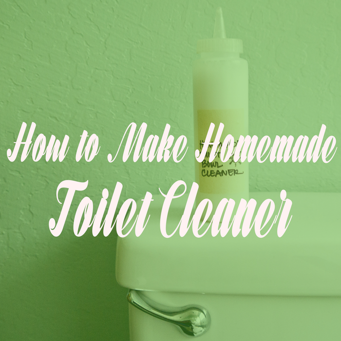how-to-make-a-homemade-toilet-cleaner
