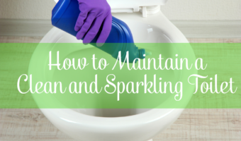 Tips on How to Maintain a Clean and Sparkling Toilet