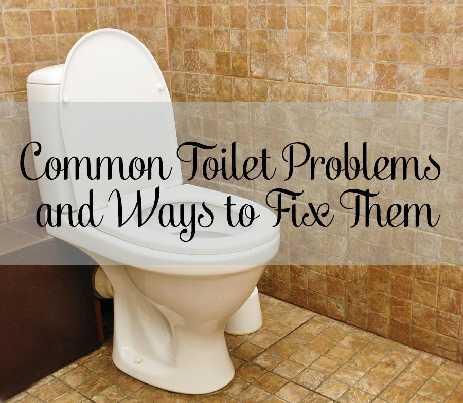 Toto Toilet Flapper Problems Bindu Bhatia Astrology