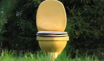 Outdoor Toilet