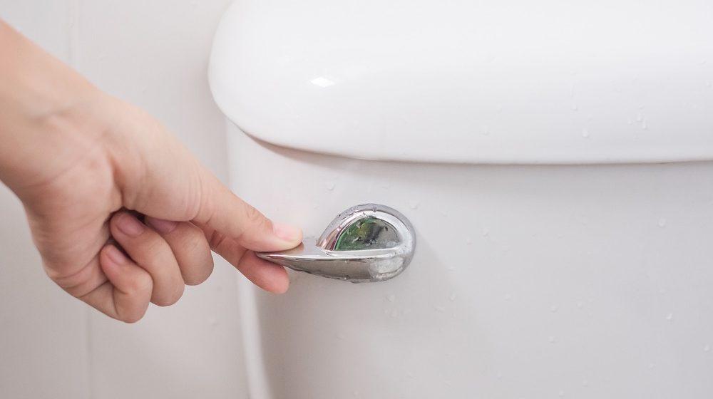 single flush toilet