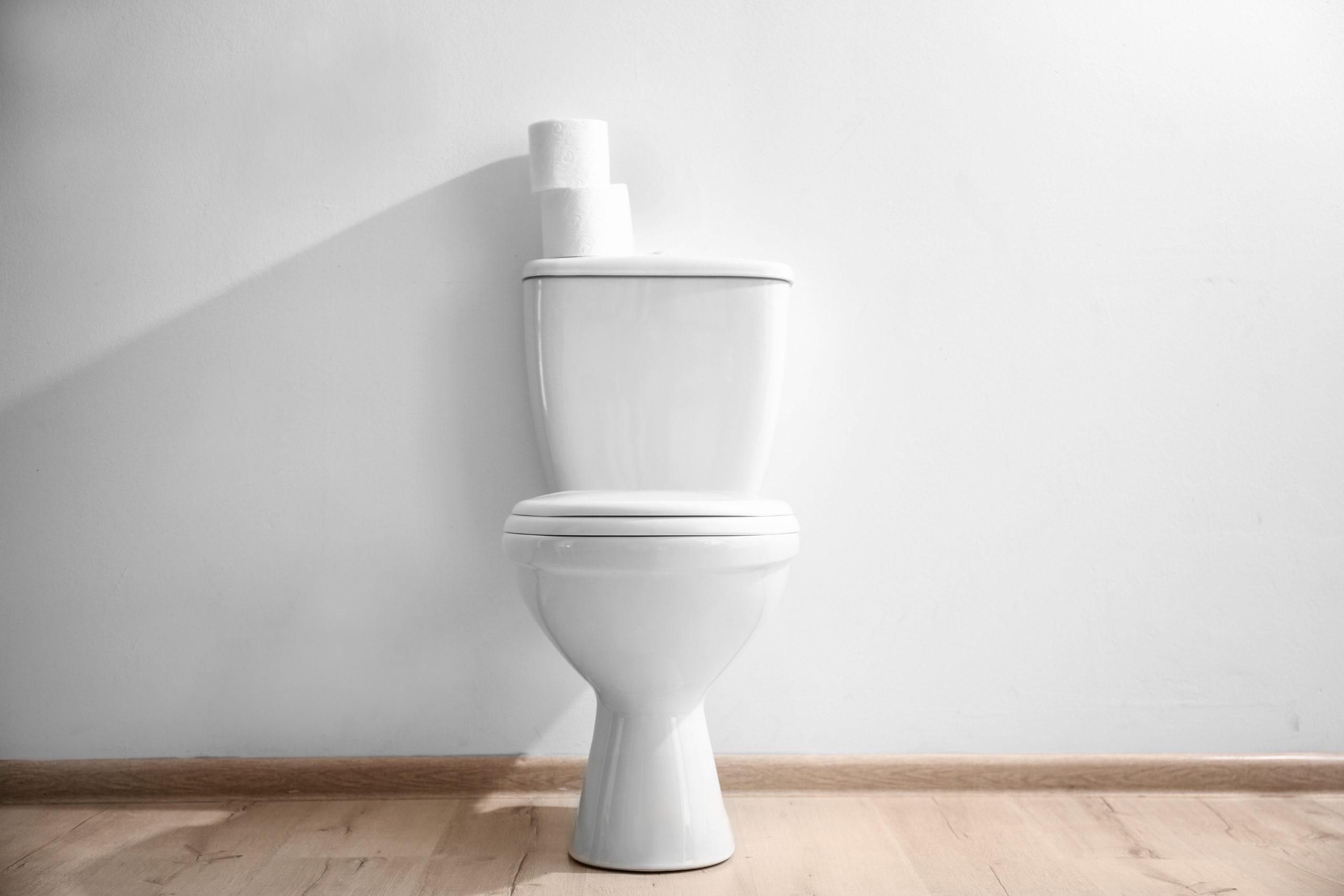 Toilet_shutterstock_New Africa