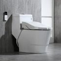 WoodBridge Luxury Bidet