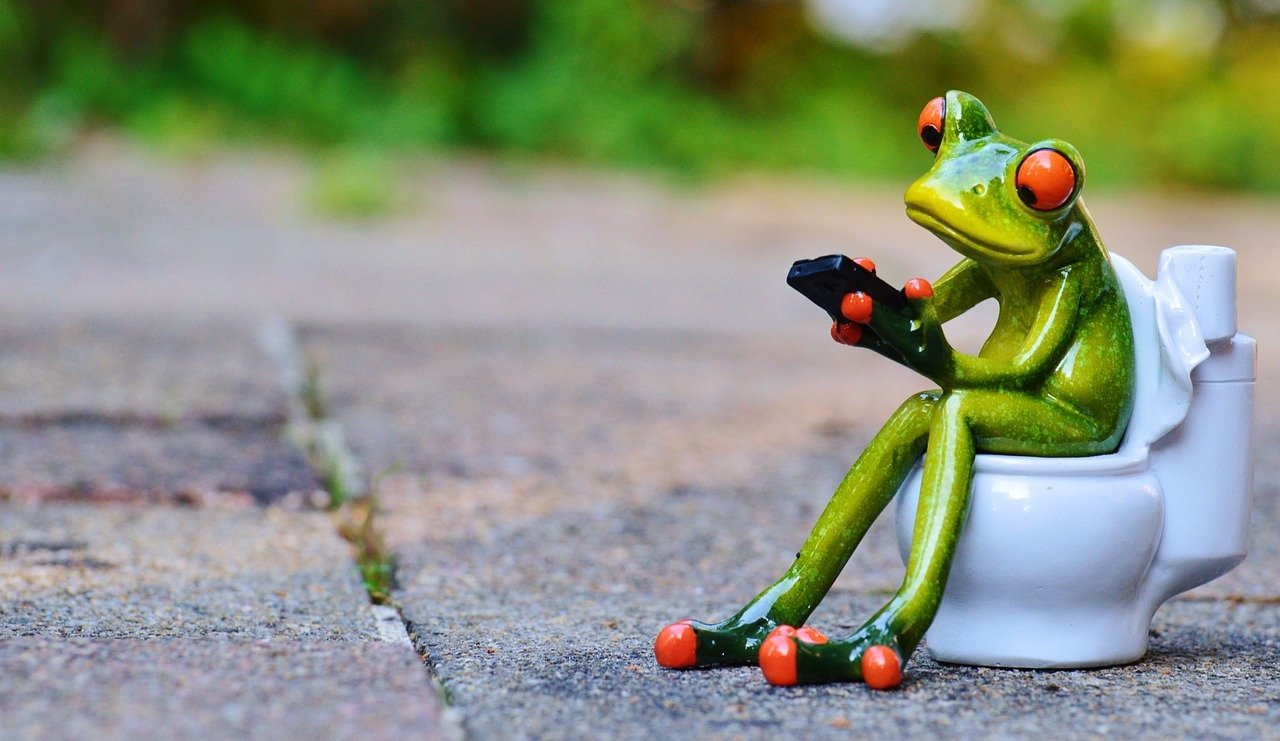 frog on toilet texting
