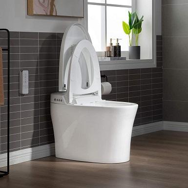 Best Woodbridge Toilet