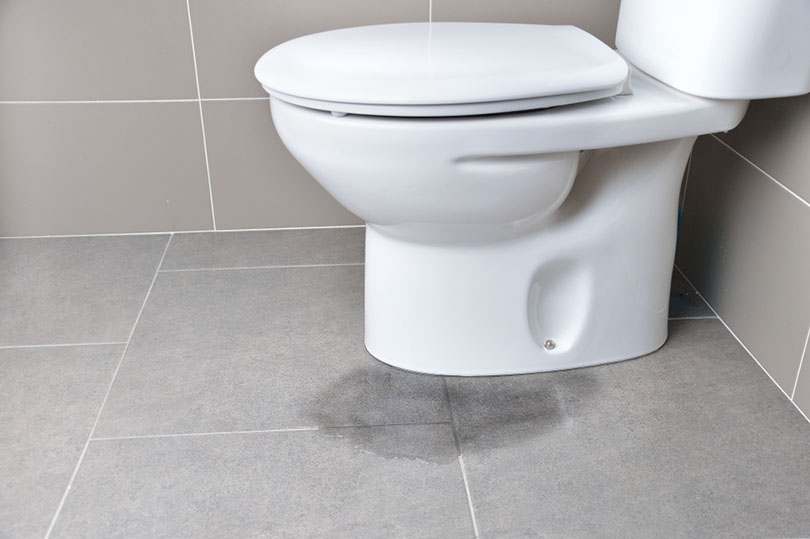 Leakage of water from a toilet_cunaplus_shutterstock 2