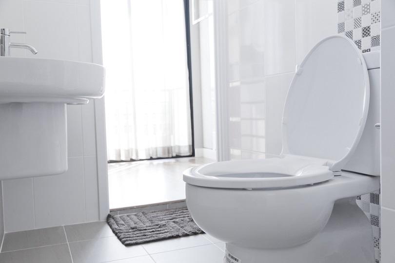 White toilet bowl_ben bryant_shutterstock