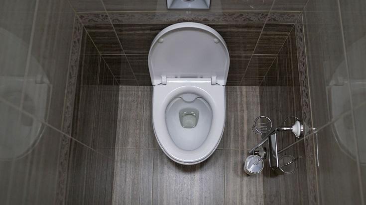 elongated toilet seat_shutterstock_Sidorov_Ruslan